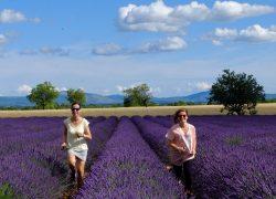 Una settimana tra Provenza, Camargue e Costa Azzurra: tutti i luoghi da non perdere
