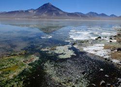 Il mio viaggio in Sud America tra Cile del nord, Argentina e Bolivia