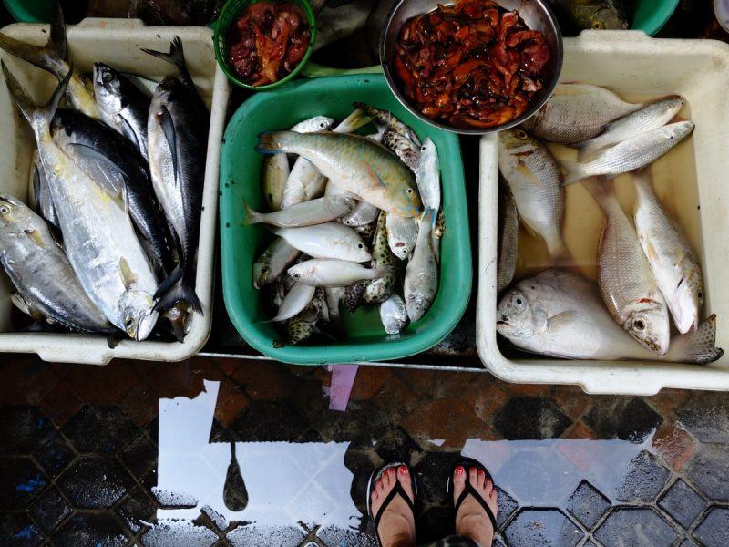 Phi Phi Island - mercato a Tonsai