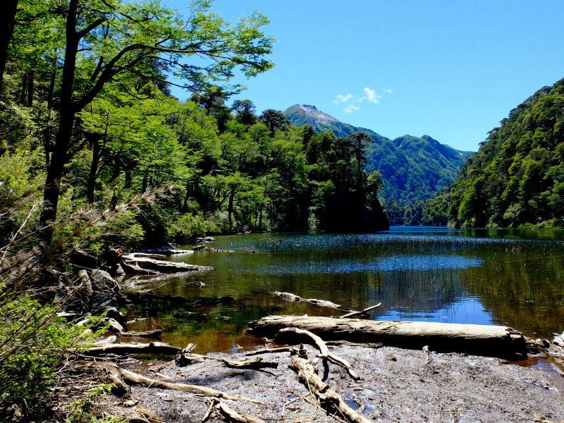 Cile del Sud: lago nel Parco Huerqueque