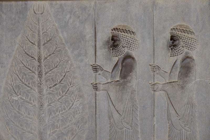 Viaggio in Iran - bassorilievo di Persepolis