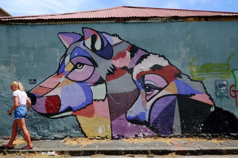 Cape Town - street art a Woodstock