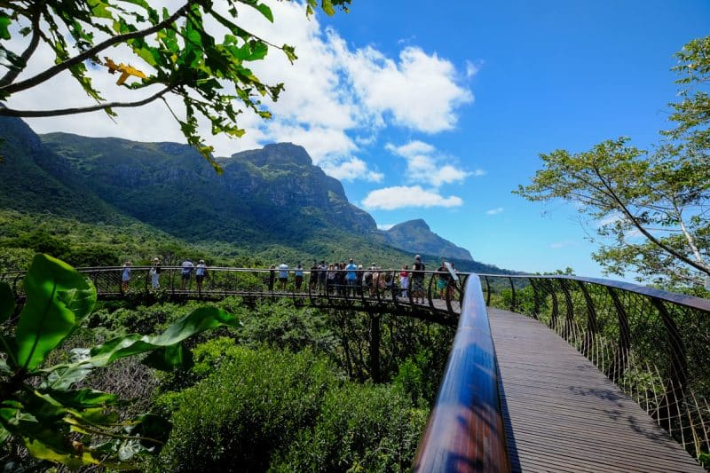 Cape Town - Kirstenbosh Botanical Gardens