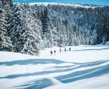 Cosa vedere a Merano in inverno