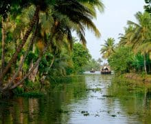 Kerala (India del Sud): 10 bellissime esperienze da fare