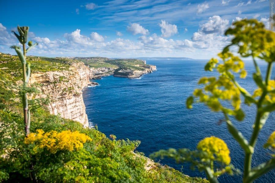 trekking sulle scogliere di Gozo