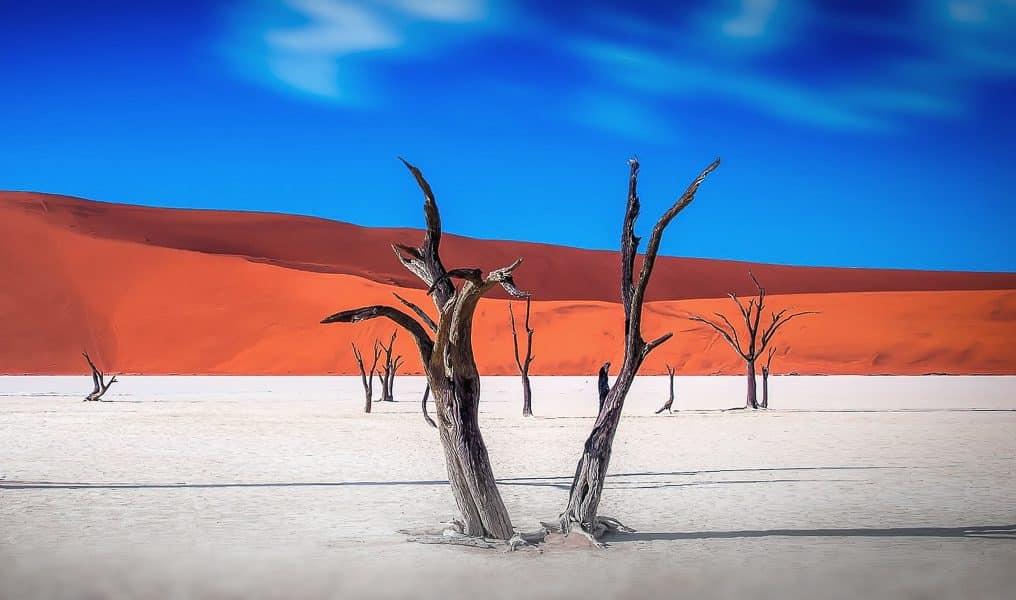 Deserti più belli del mondo - Namib