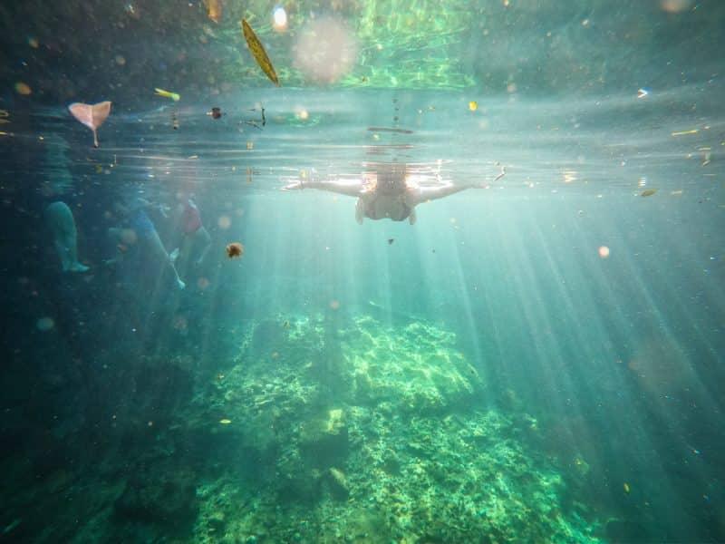 Tulum - cenote Casa Tortuga