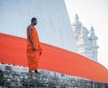 Cosa vedere in Sri Lanka in 2 settimane