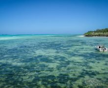 Zanzibar: cosa vedere, quando andare e consigli vari