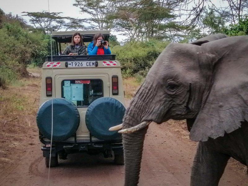 Tanzania-Safari_Lake Manyara