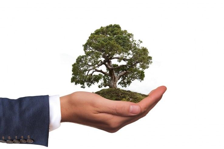 Regali eco-sostenibili