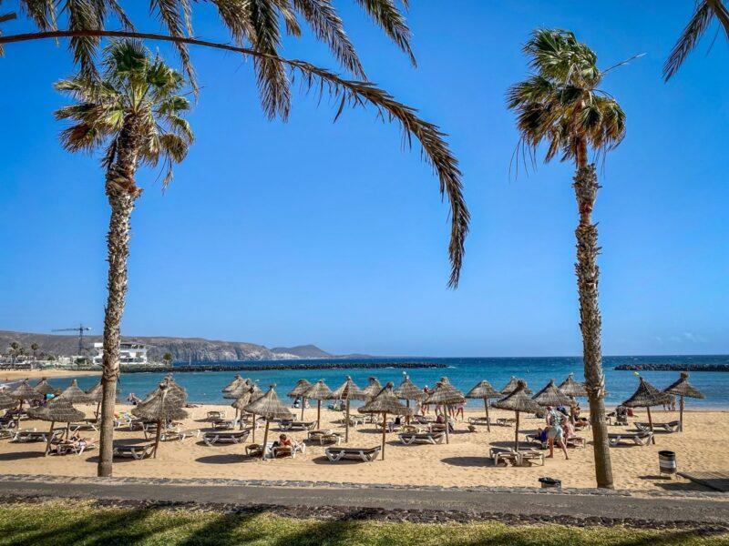 Cosa vedere a Tenerife Sud: Playa las Americas