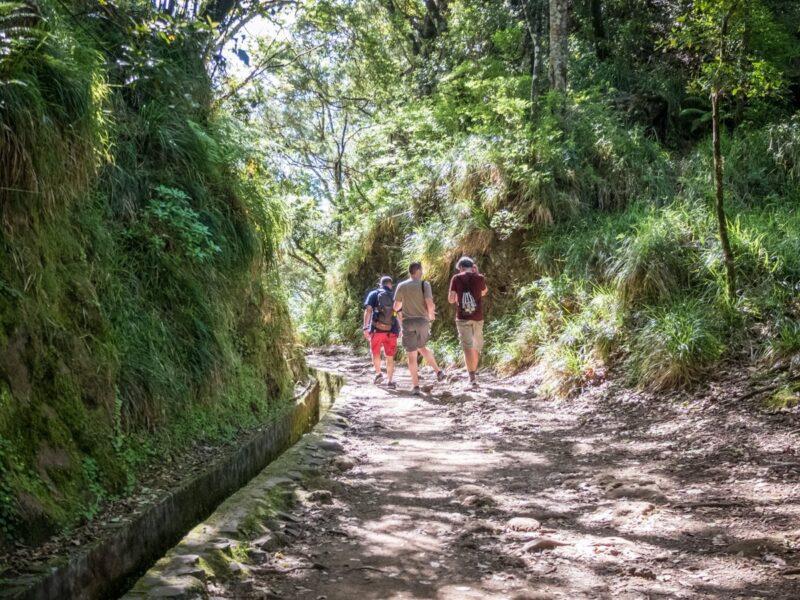 trekking lungo le levadas a Madeira
